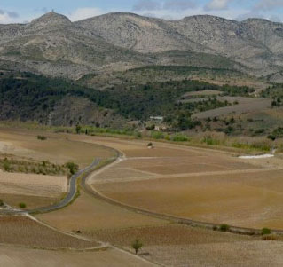 AOC Côtes Du Roussillon Villages