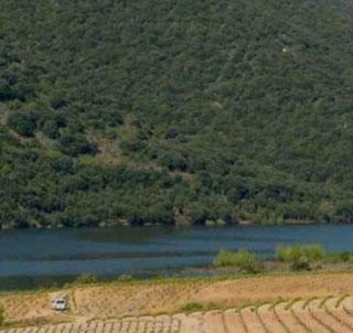 AOC Côtes Du Roussillon Villages Caramany