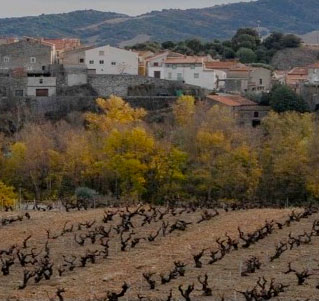 AOC Côtes Du Roussillon Villages Latour de France
