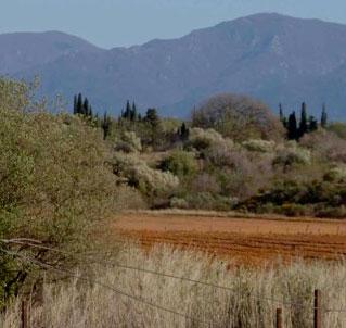 AOC Côtes Du Roussillon Villages Les Aspres