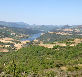 AOP Côtes du Roussillon Villages Caramany