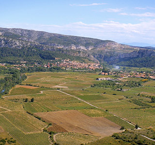 AOP Côtes du Roussillon Villages Tautavel